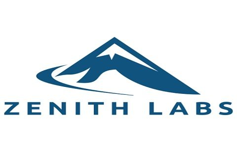 Junior Media Buyer job at Zenith Labs